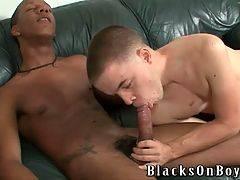 Black Guy Looks For White Ass 4